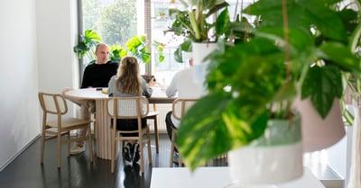 På bilden syns en man och en kvinna vid ett bord framför ett fönster. I förgrunden syns en grön växt i en blomkruka.